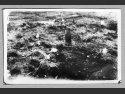 Ekshumacje ciał zmarłych i zamordowanych więźniów z leśnego cmentarza w Sławięccach - zdjęcie z marca 1946